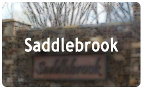 Saddlebrook